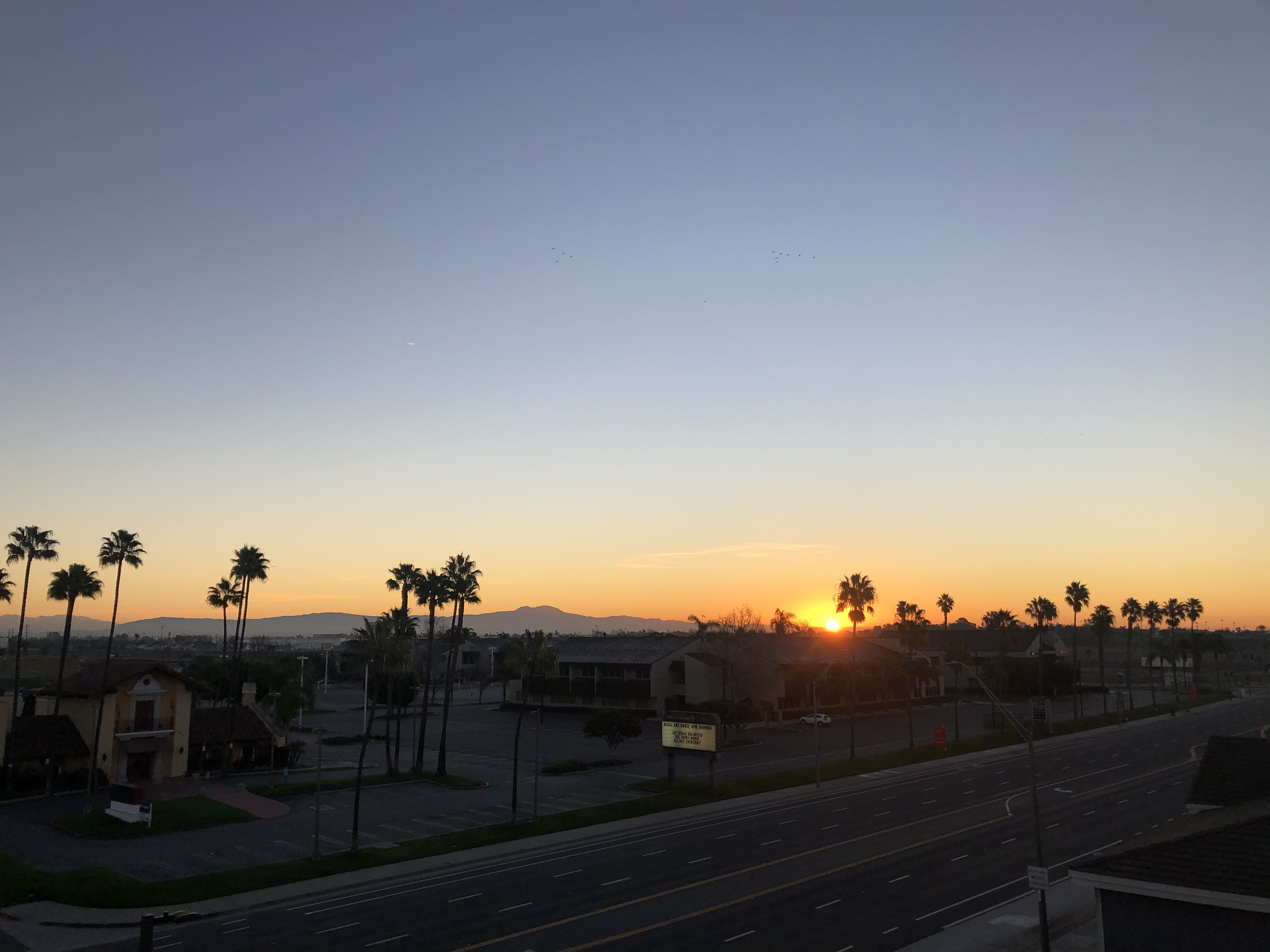 A sunrise over a quiet Long Beach on the following day. It was cold as hell during the night so I woke up at 6:00 to go get hot chocolate and watch the sunrise from a parking structure.
